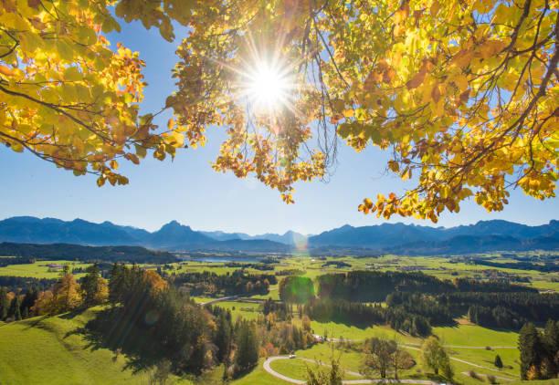 weitwinkel-panorama-blick auf ländliche landschaft in bayern mit alpen berge - allgäu stock-fotos und bilder