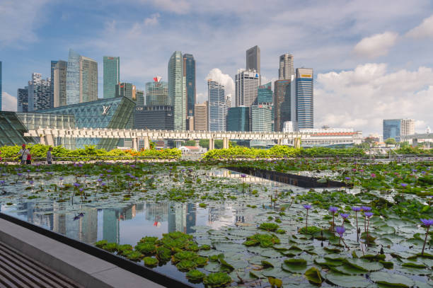 Wide angle shot Singapore's famous view of around marina bay district a popular tourist attraction of Singapore. Wide angle shot Singapore's famous view of around marina bay district a popular tourist attraction of Singapore. esplanade theater stock pictures, royalty-free photos & images