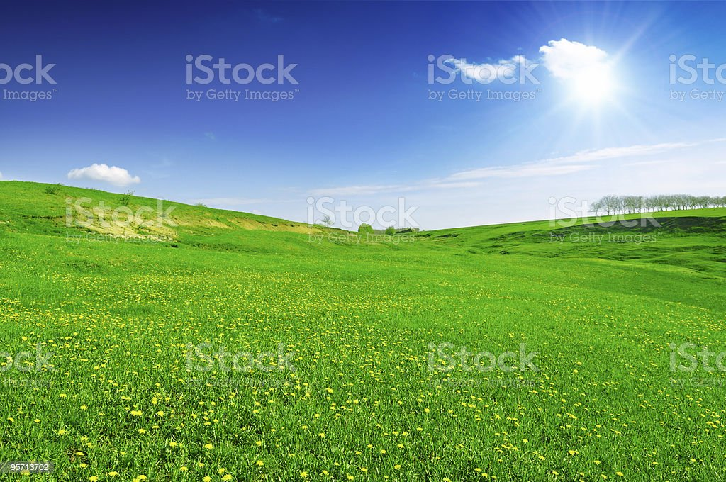 A wide expanse of green meadow field under the blue sky royalty-free stock photo