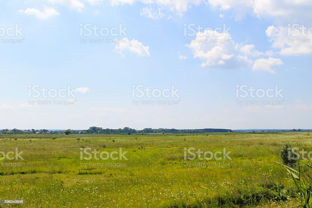 Wide meadow and blue sky. Summer landscape royalty-free stock photo