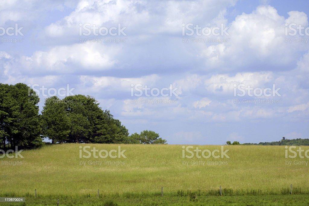 wide open landscape royalty-free stock photo