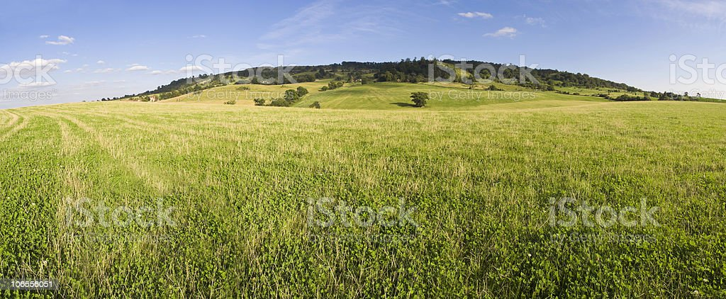 Wide open pastures royalty-free stock photo