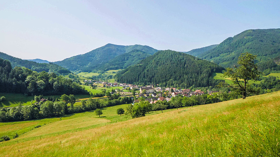 Wide shot of a valley in the Black Forest (Schwarzwald), Germany