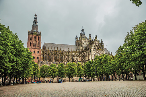 Wide square with cobblestone and trees in front of St. John's Cathedral in a cloudy day at s-Hertogenbosch.