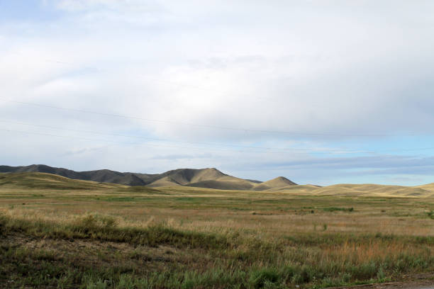 Wide steppe with yellow grass under a blue sky with white clouds Sayan mountains Siberia Russia Wide steppe with yellow grass under a blue sky with white clouds Sayan mountains Siberia Russia. beautiful hill steppe stock pictures, royalty-free photos & images