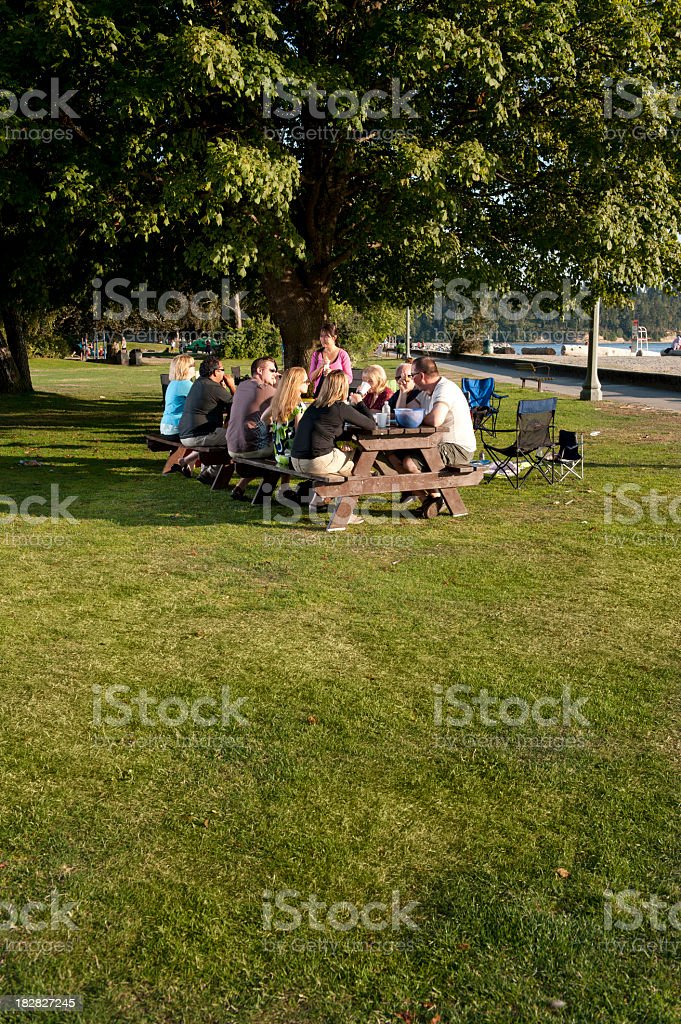 Wide view of a family sitting at a picnic bench stock photo