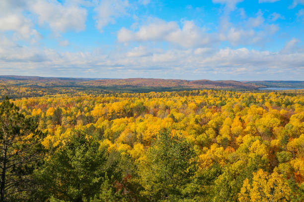 Wide view of Algonquin Provincial Park stock photo