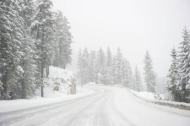 Wide windy highway blizzard thru snow covered forest Dangerous Road conditions during a blizzard blizzard stock pictures, royalty-free photos & images