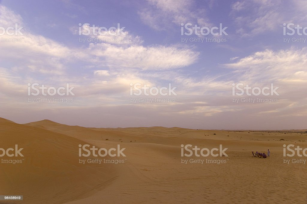Wide-angle shot of  camel in the desert royalty-free stock photo
