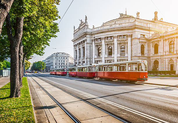 wiener ringstrasse with burgtheater and tram at sunrise, vienna, austria - vienna stock photos and pictures