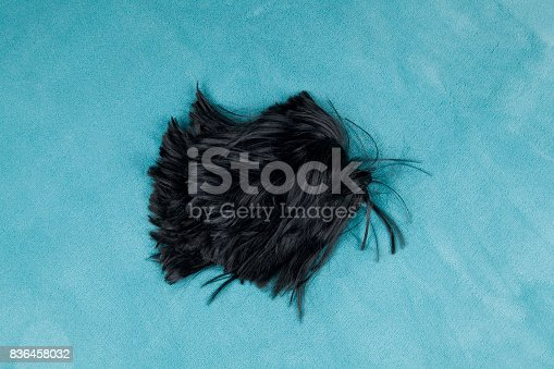 istock wig on carpet 836458032