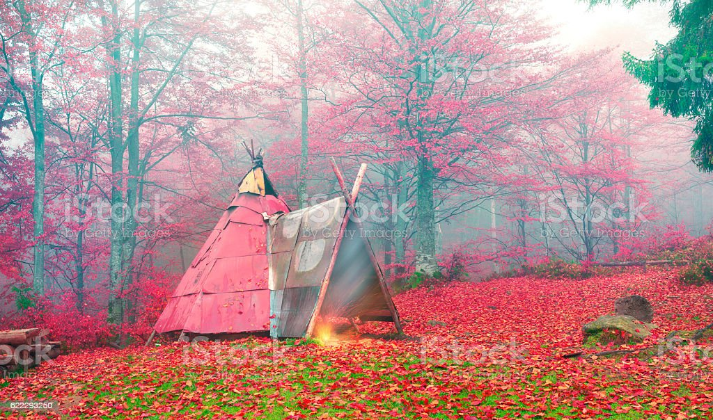 Wigwam in the autumn forest stock photo