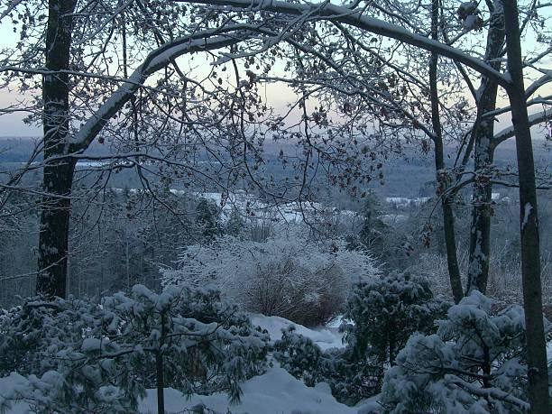 Wiinter Landscape stock photo