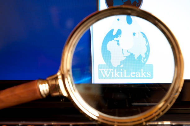Wikileaks website through a magnifying glass stock photo