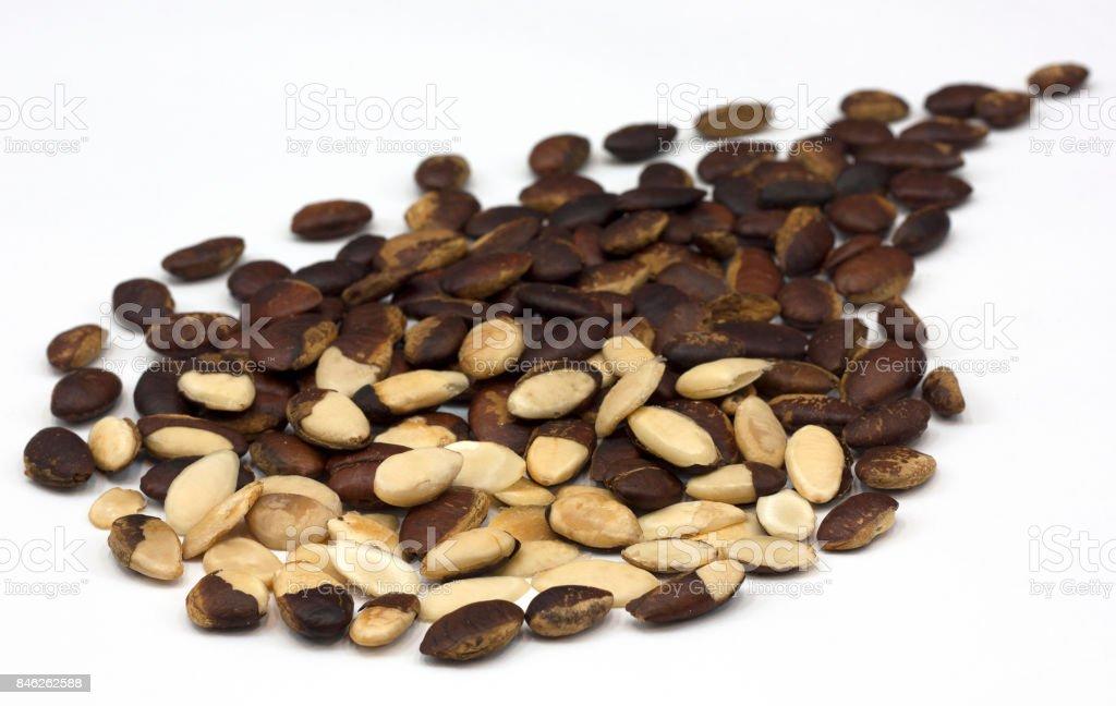 Wild almond stock photo