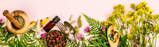 Wild and Healing herbs concept, flat lay, top view stock photo