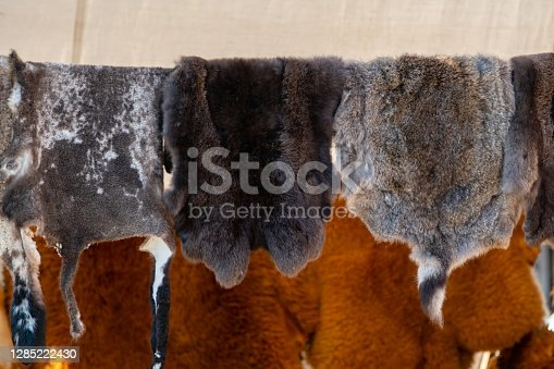 Wild animals fur hanging on the wooden home wall outside