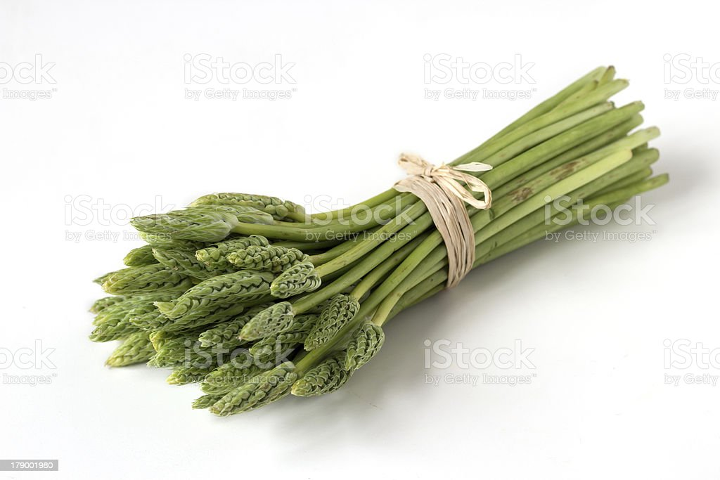 Wild asparagus royalty-free stock photo