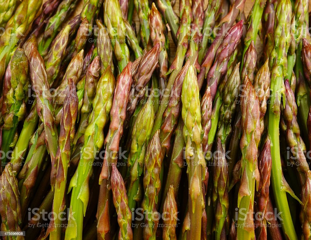 wild asparagus stock photo