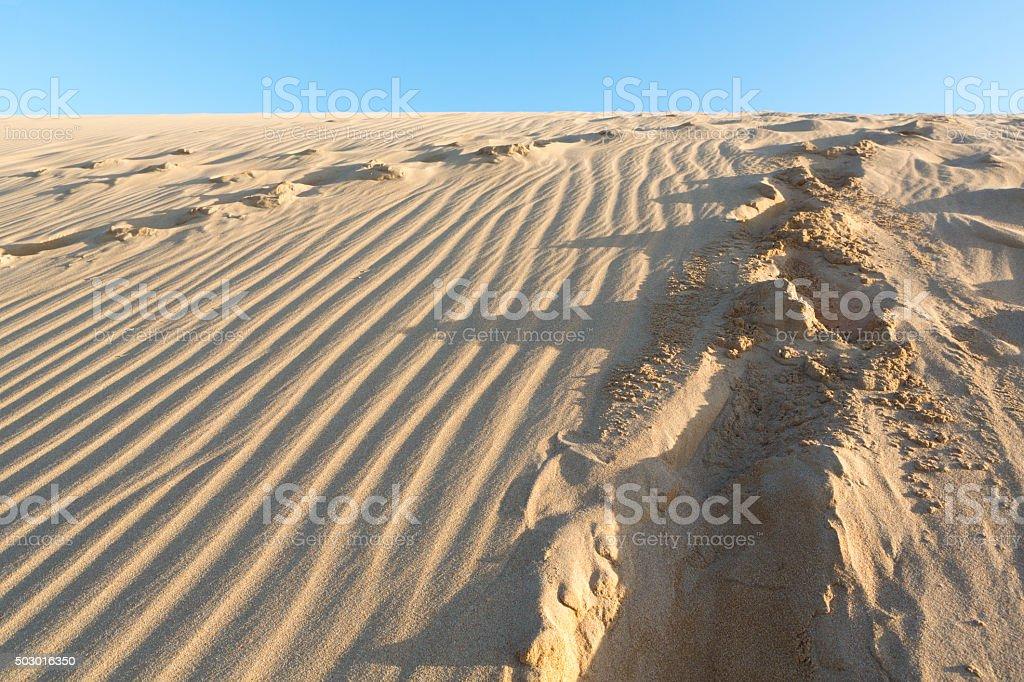 Wild beach and amazing sand dune in La Guajira, Colombia stock photo