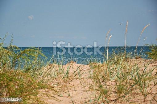 istock wild beautiful sandy beach in sunly day 1139530342