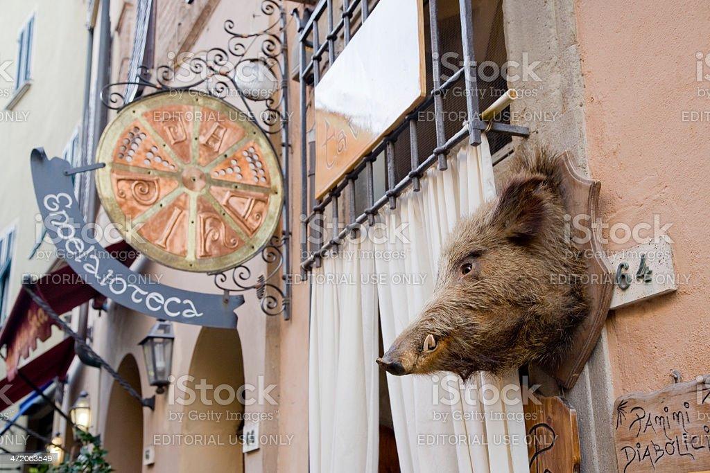 Wild boar head royalty-free stock photo