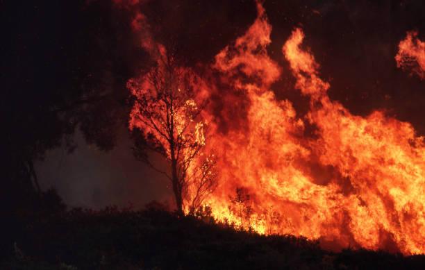 wilde bushfire branden uit de hand - bosbrand stockfoto's en -beelden