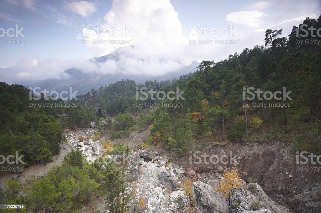 wild canyon royalty-free stock photo