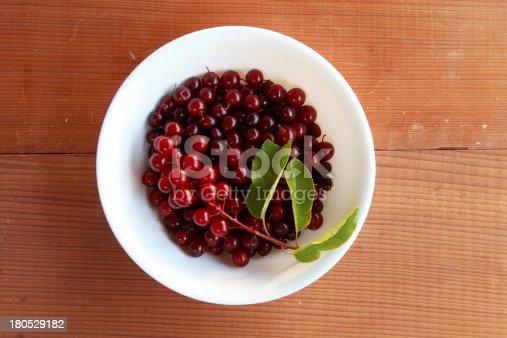 istock Wild chokecherry (Prunus virginiana) fruit in a white bowl. 180529182