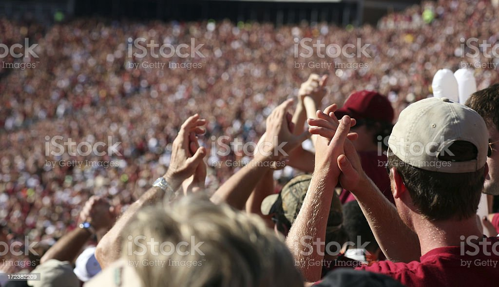 Wild Fans at Sporting Event royalty-free stock photo