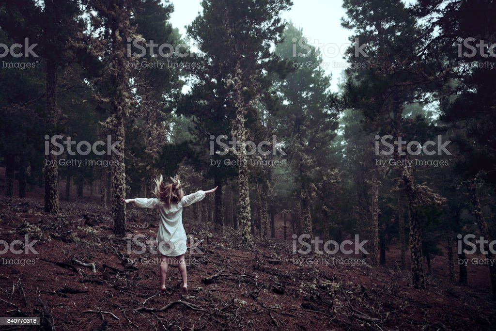 wild feelings stock photo