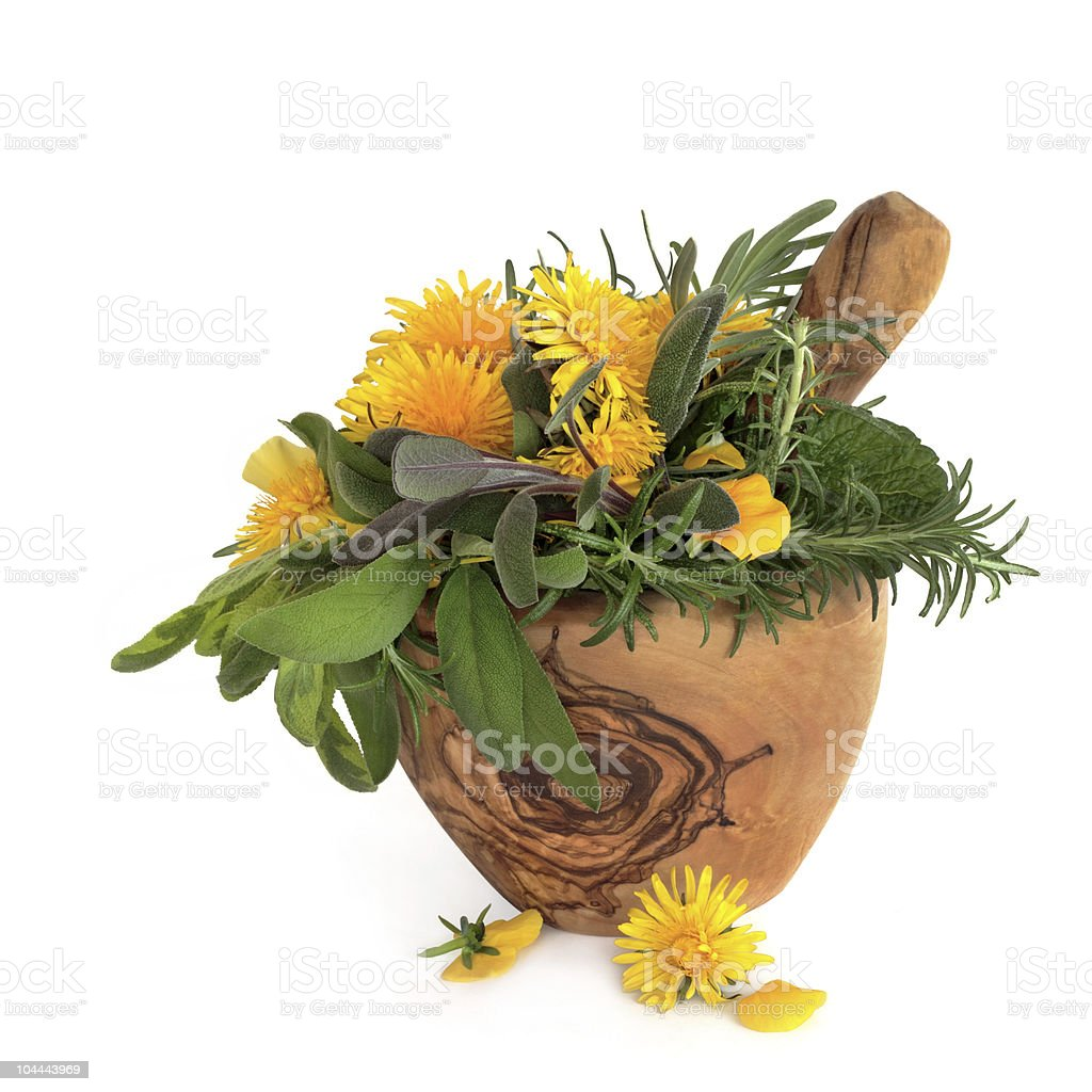 Wild Flowers and Herbs royalty-free stock photo