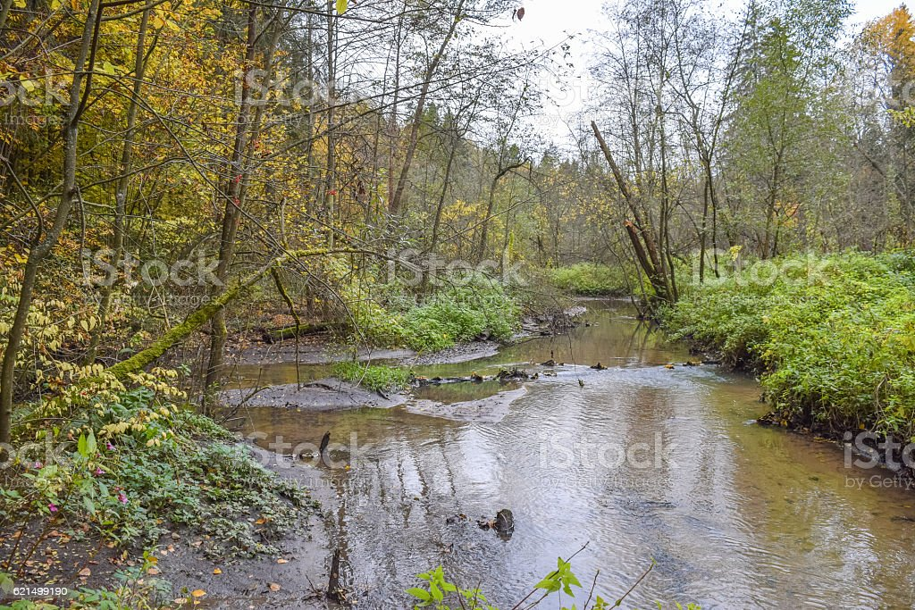 Wild forest river. Cold autumn of Siberia Lizenzfreies stock-foto