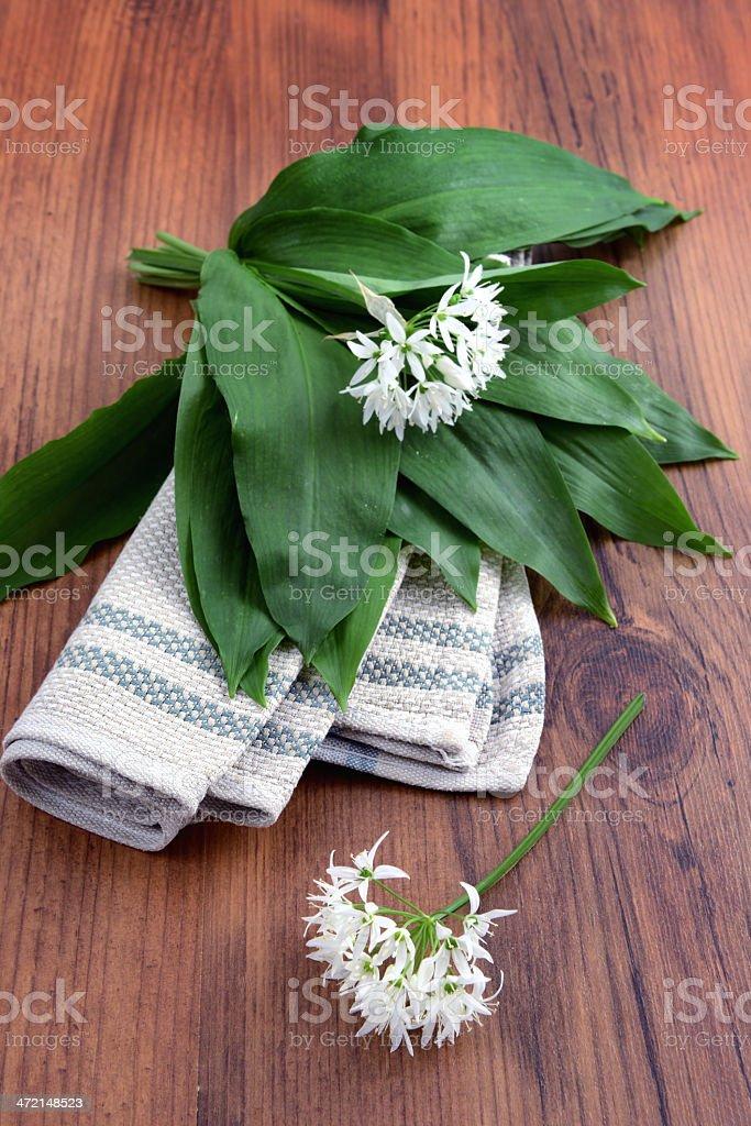 wild garlic (Allium ursinum) on table stock photo