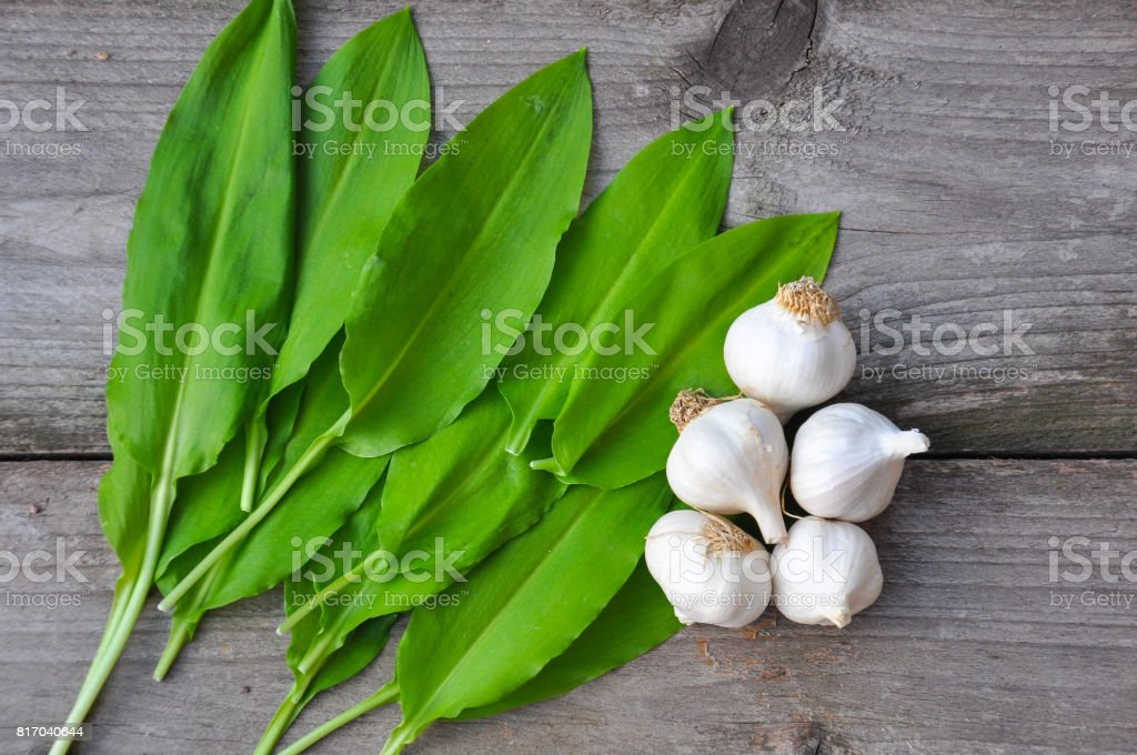 Wild garlic ramson or bear garlic with garlic bulb and garlic cloves on wooden background. stock photo