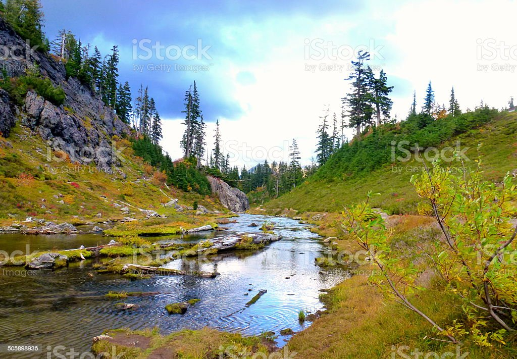 Wild goose trail in Mt Baker,WA stock photo