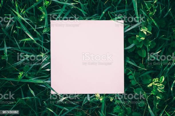 Wild grass frame picture id957430062?b=1&k=6&m=957430062&s=612x612&h=q2y9wdp a8kxccdr5cdreqtk9vesu dkcp9nbdohlem=