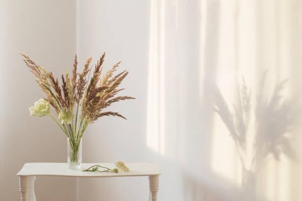 wild grass plants in glass vase in sunlight in white interior stock photo