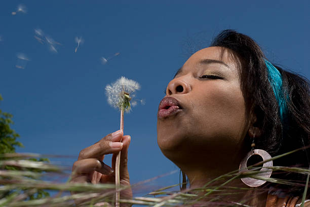 Wild Grass Series stock photo