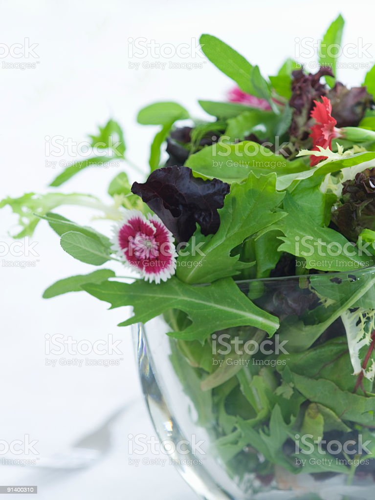 wild greens and herbs stock photo