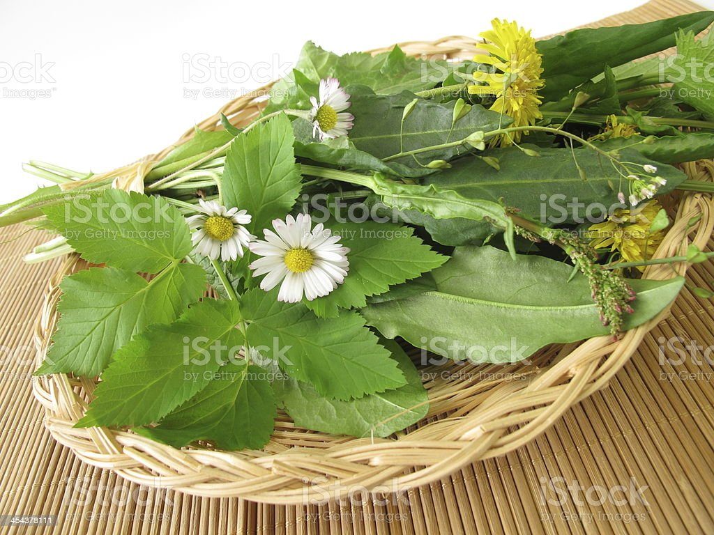 Wild herbs in basket royalty-free stock photo