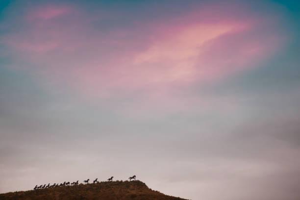 Wild Horse-Memorials – Foto