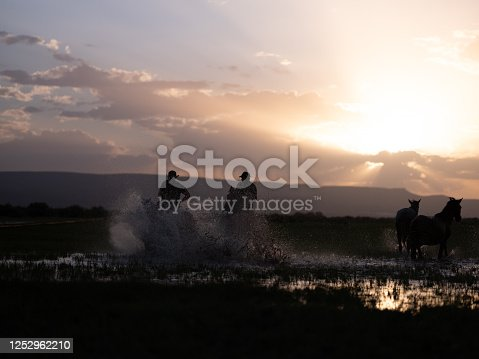 Erciyes mountain (ancient volcanic mountain), close to Cappadocia / Kapadokya region, is home to wild horses also called