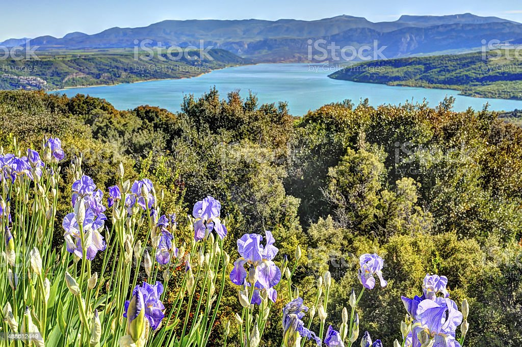 Wild Iris and St Croix Lake, Provence, France stock photo