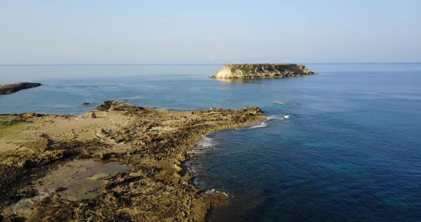 海鷗在地中海海洋野生島。旅行。世界各地圖像檔