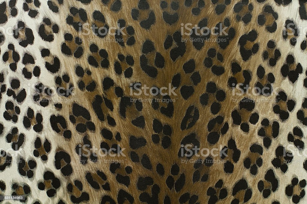 wild leopard pattern background or texture stock photo