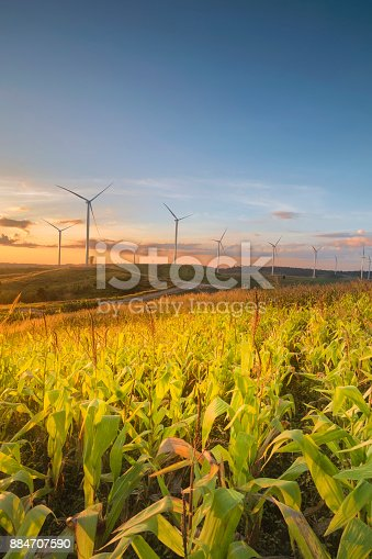 istock Wild mill in field. Power and energy, electric wind turbine for industry 884707590