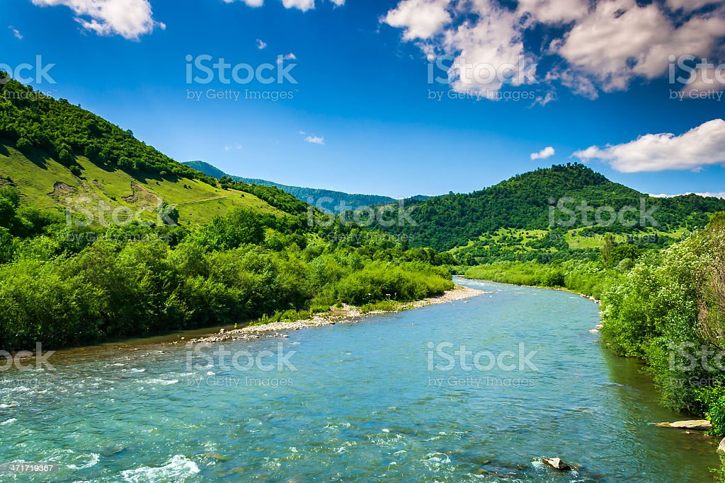wild mountain river on a clear summer day stock photo