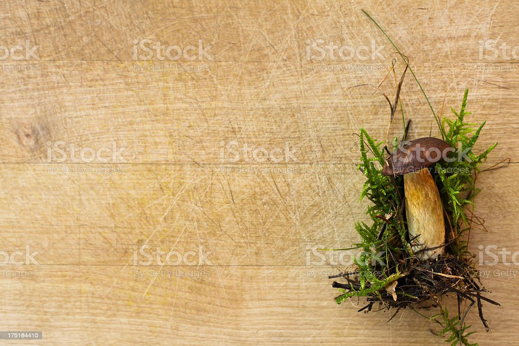 Wild mushroom on a wooden chopping board royalty-free stock photo