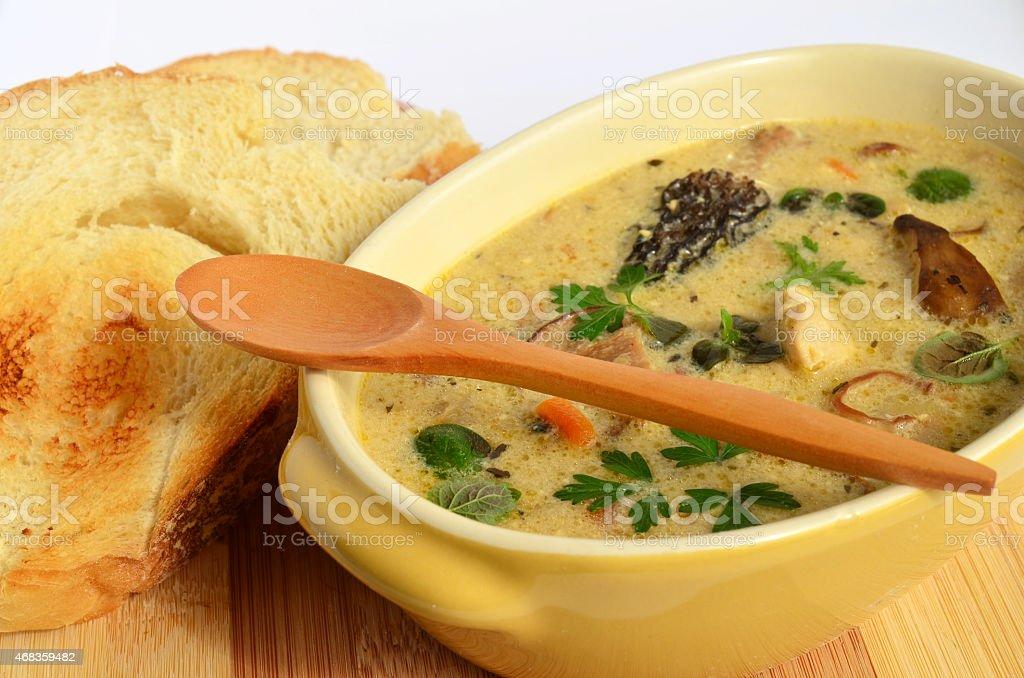 Wild mushrooms cream soup royalty-free stock photo